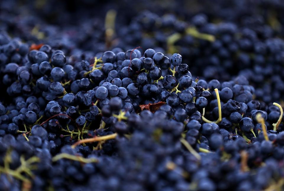11_6_2017_Grapes