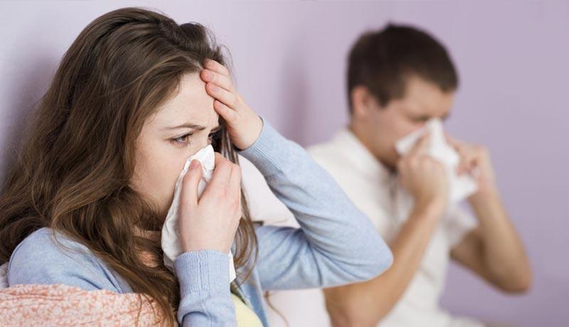 انفلونزا الكزبرة