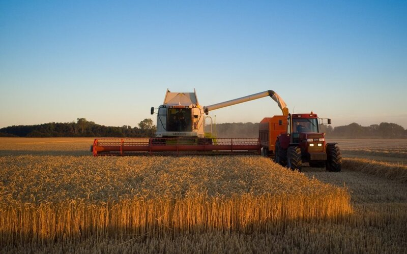 10 أشياء يجب أن تعرفها عن الزراعة الصناعية
