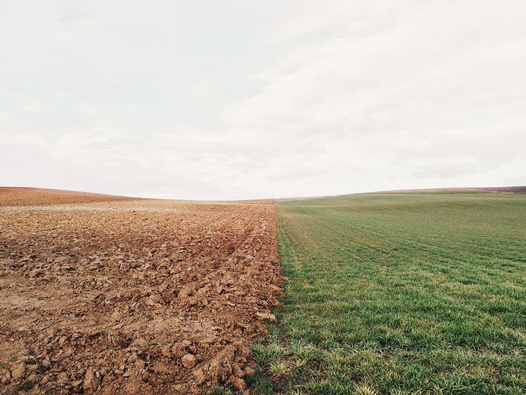 الغبار الصخري المطبق على الحقول الزراعية يمكنه التقاط 2 مليار طن من ثاني أكسيد الكربون