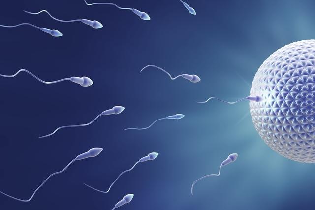 الحمل: كيفية حساب التاريخ الدقيق