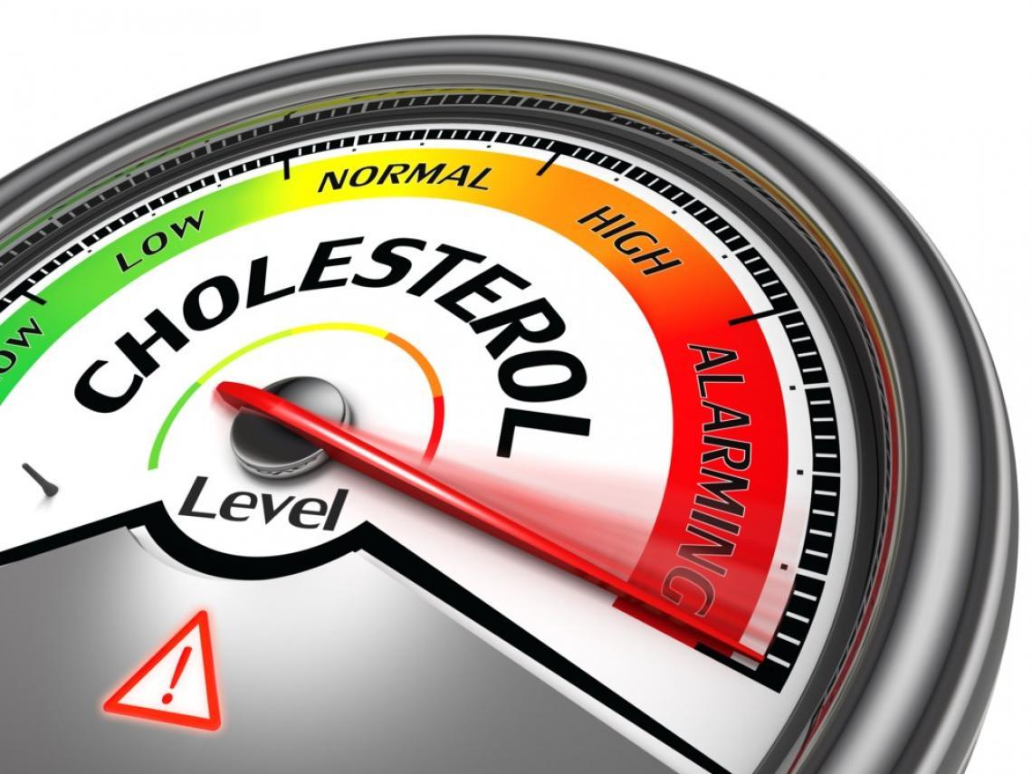 أهمية الدهون